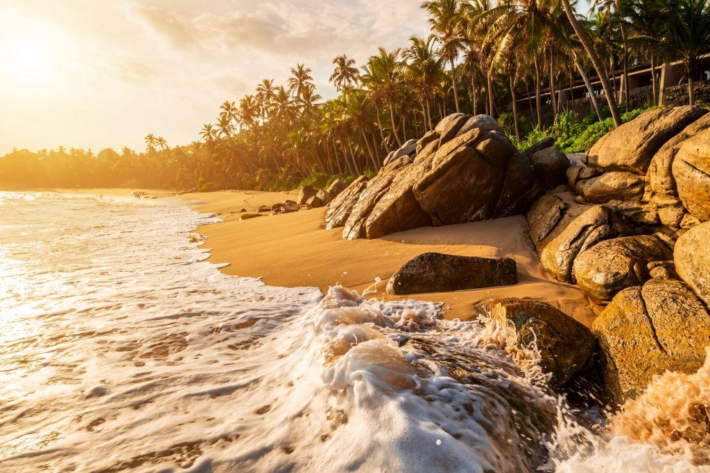 Beau coucher de soleil sur la plage avec des palmiers sur une île des Caraïbes