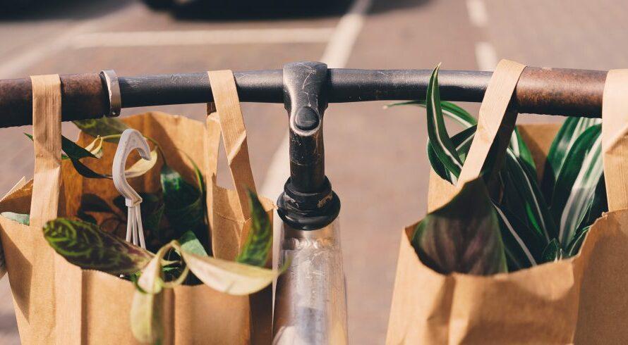 3 conseils d'achat écologiques: un petit guide pour être plus écologique