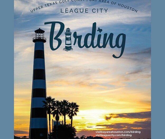 League City est en plein essor avec des cours et des événements d'observation des oiseaux populaires