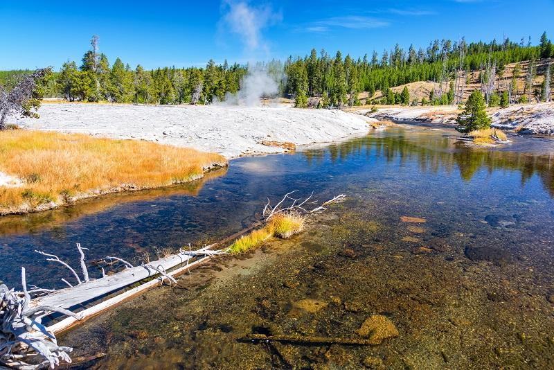 Firehole River dans le parc national de Yellowstone