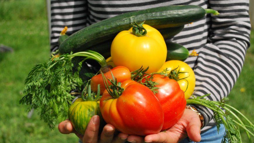 cultiver ses propres fruits et légumes