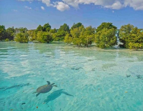 Journée mondiale des océans 2021 – Sauver les mers des Seychelles