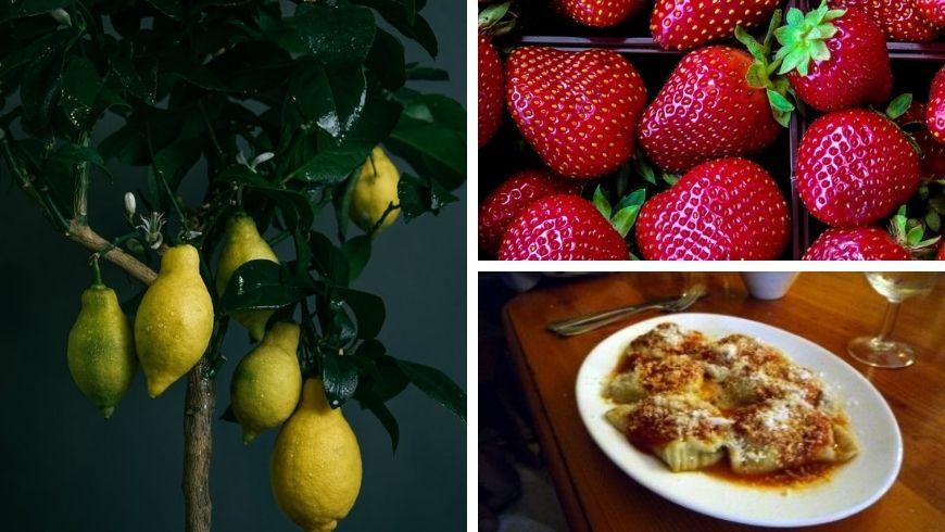 Spécialités culinaires de Gozo