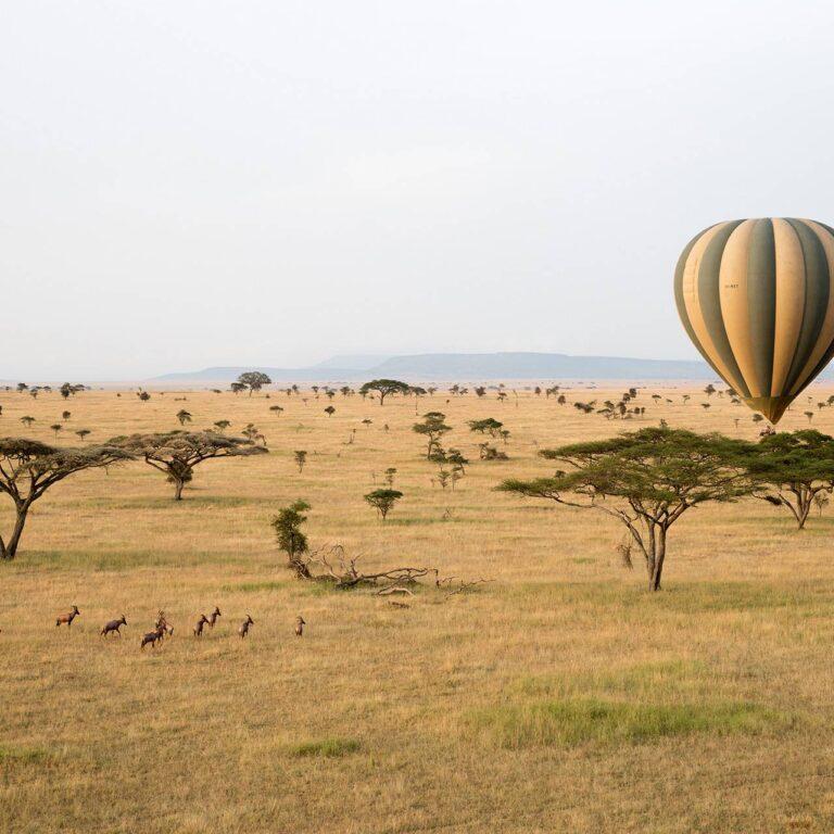3 voyages écologiques durables qui vont un peu plus loin