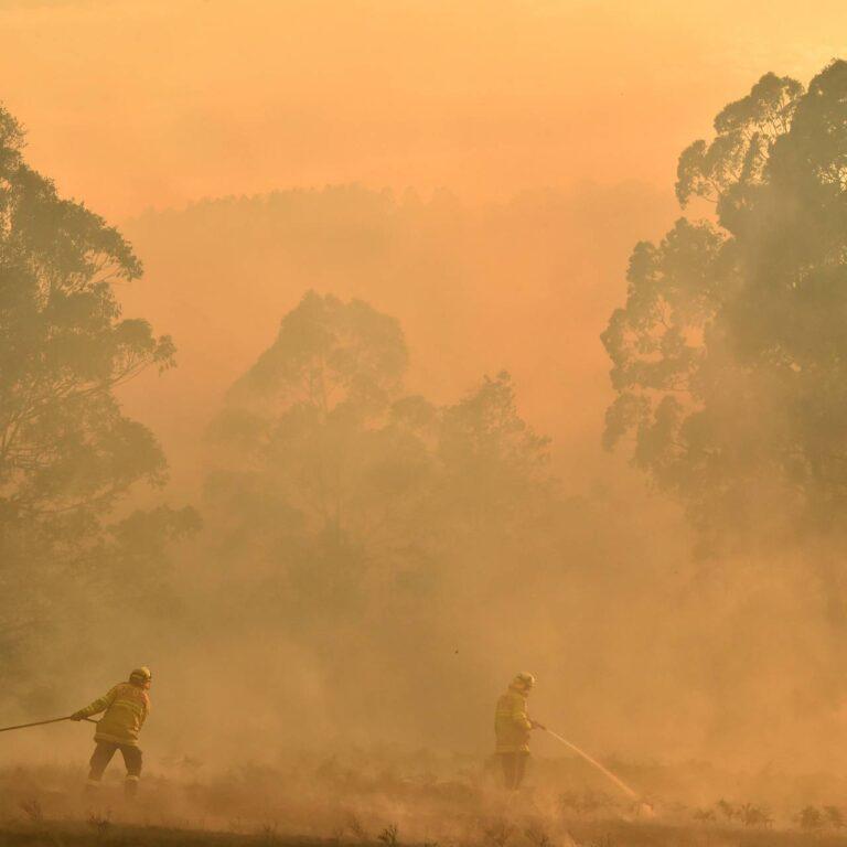 Les événements de collecte de fonds sur les feux de brousse australiens auxquels se rendre à Londres