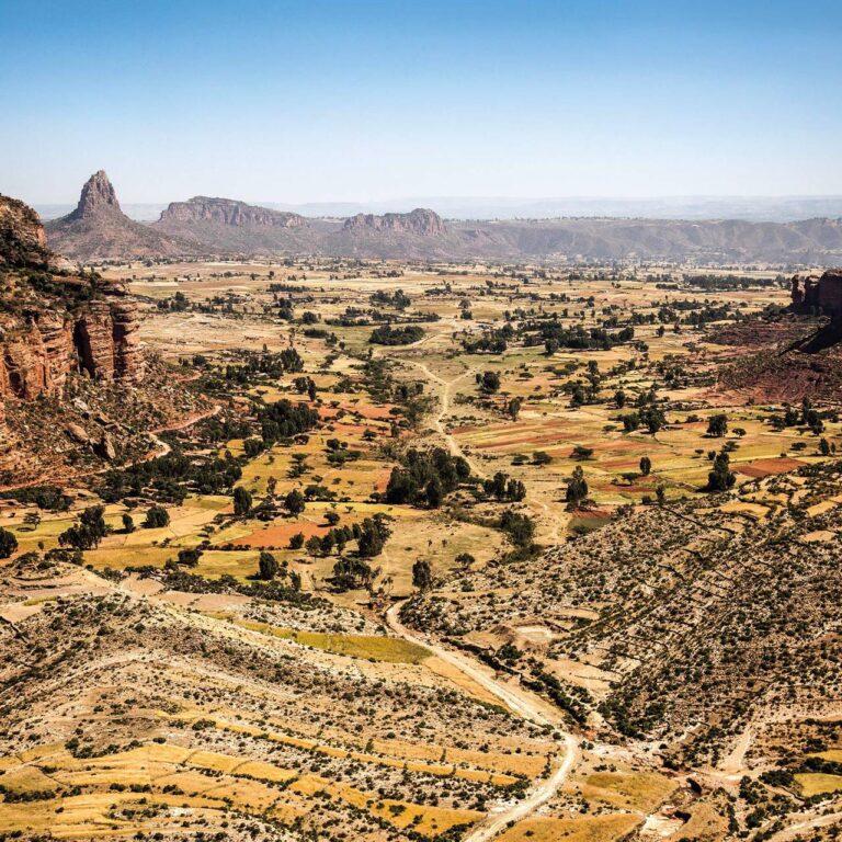 Découvrez le projet africain qui aide à sauver l'environnement