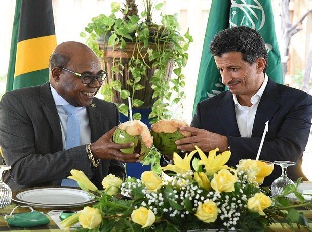 Le ministre jamaïcain du Tourisme participera au Sommet de relance du tourisme en Afrique