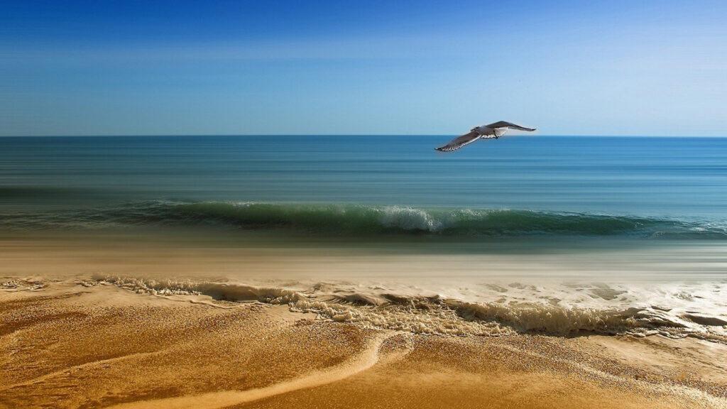 Choisissez un camping en Charente-Maritime pour vous offrir de vraies vacances
