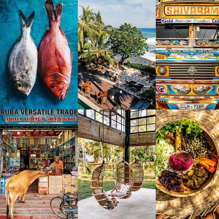 À la recherche d'un critique gastronomique pour la meilleure cuisine du Sri Lanka