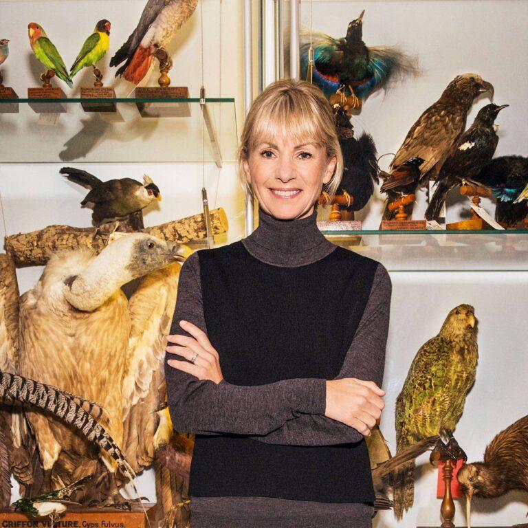 Carcassonne, France : où Kate Mosse trouve l'inspiration pour ses romans