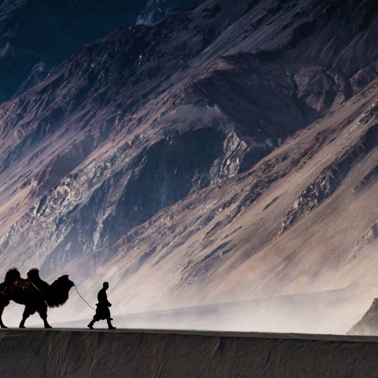 Le carnet d'adresses mondial du PDG de Voygr Expeditions, Behzad J Larry