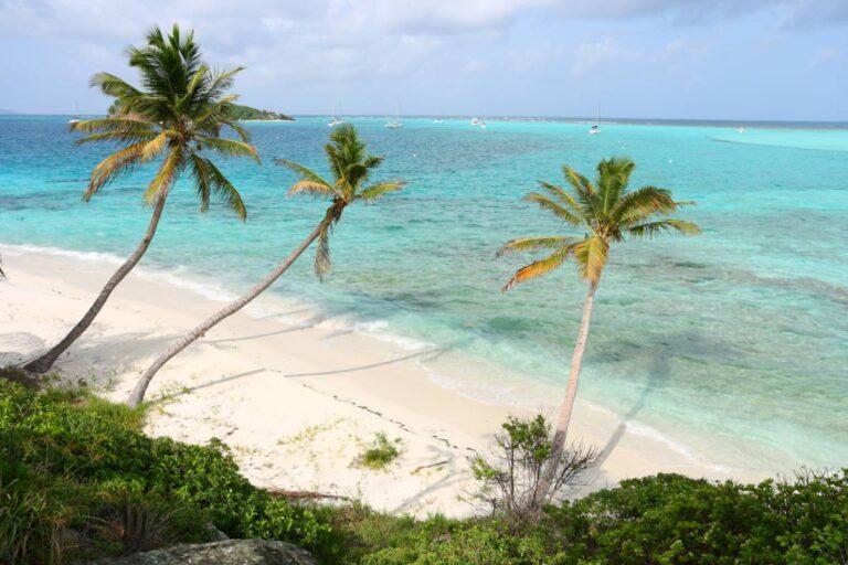 Comment découvrir les secrets de la Martinique ?
